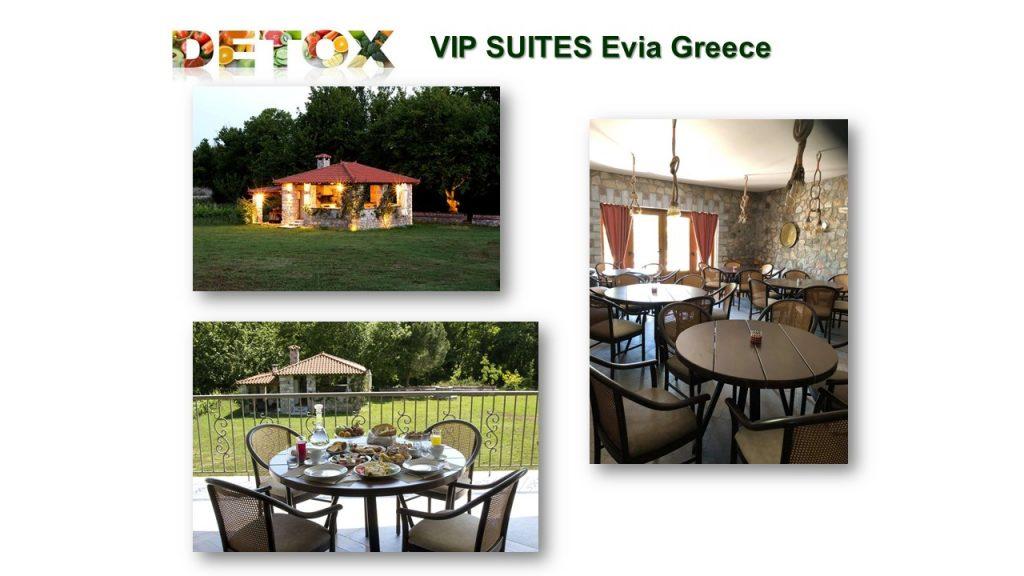 διακοπές detox wellness suites