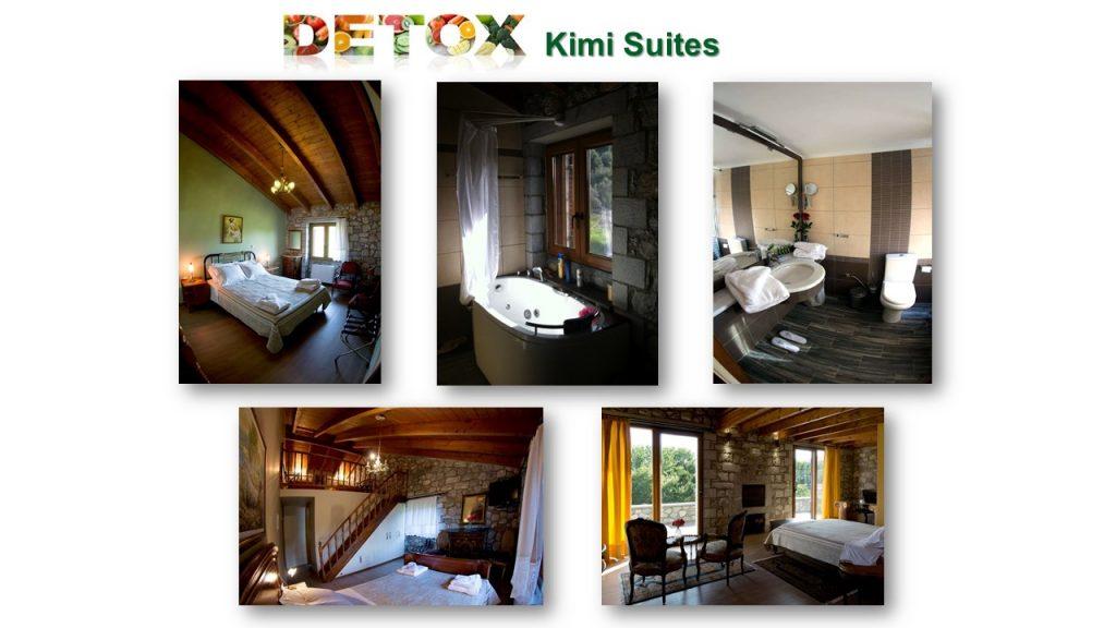 detox wellness suites